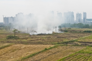 The Bullet Train from Shanghai to Beijing passes through primarily rural areas, with the occasional Ghost City breaking the horizon.  Field burning contributes to the heavily polluted air.