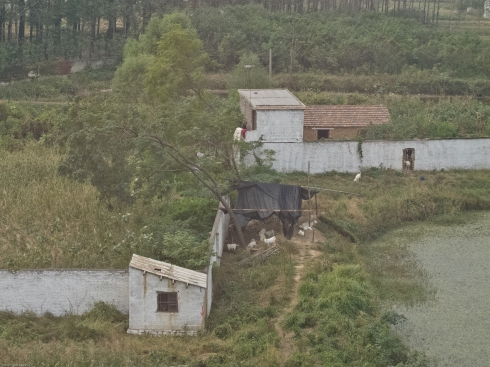 Small, farms between Shanghai and Beijing