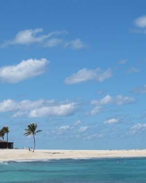 The Atlantis in the Bahamas
