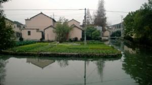 Guijing Community Garden