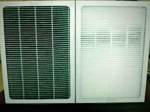 10 week old air filter on left, new filter on right.
